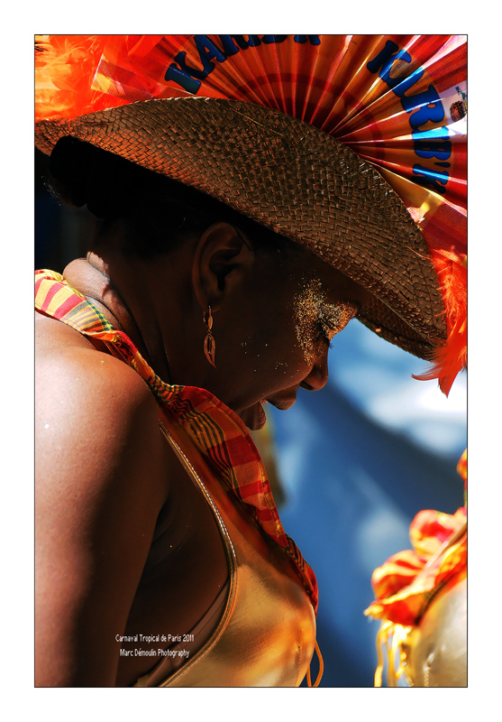 Paris Tropical Carnival 2011 - 59