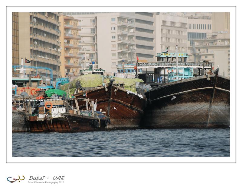 Dubaï - UAE - 88