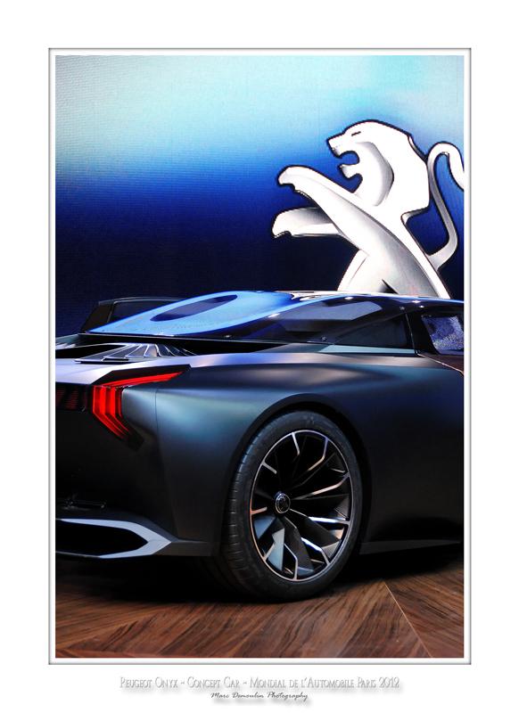 Peugeot Onyx 13