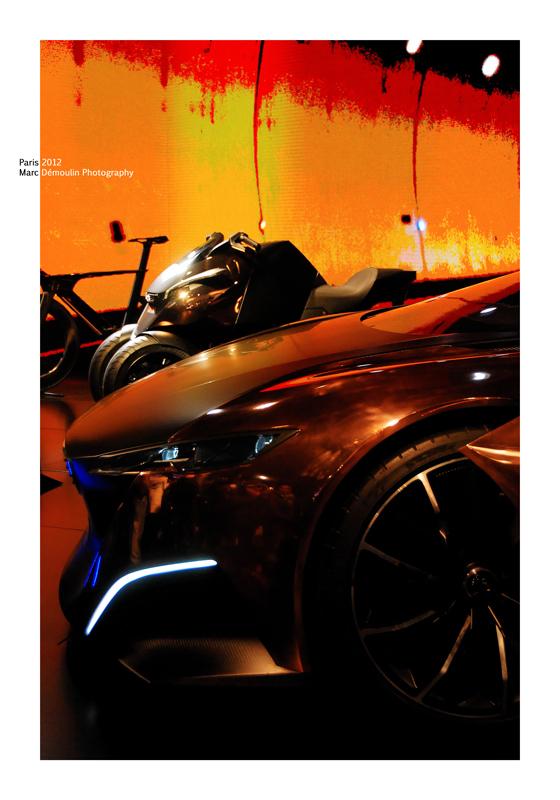 Peugeot Show Room 10