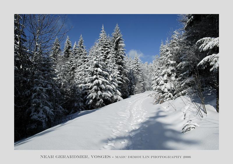 Vosges, near Gerardmer 3