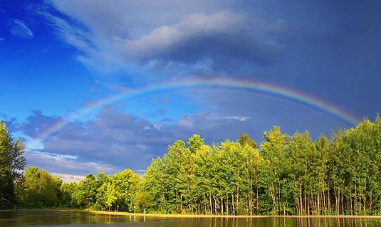 Rainbow 20080807