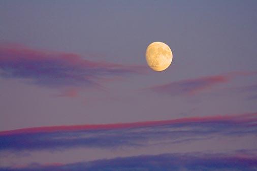 Moonrise 17637