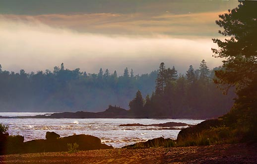 Looming Fog 49835-6