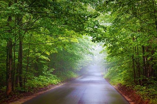 Foggy Rainy Back Road 04861