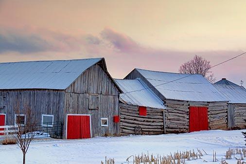 Red Barn Doors 20100204