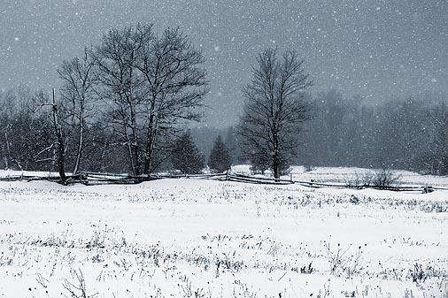 Snowstorm Snowscape 14246