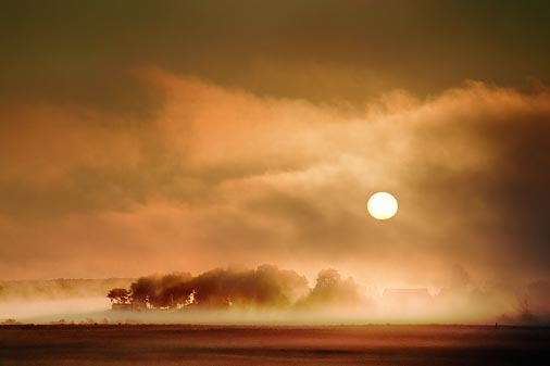 Foggy Sunrise 20100801