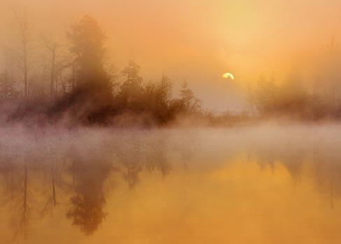 Foggy Sunrise 20110501