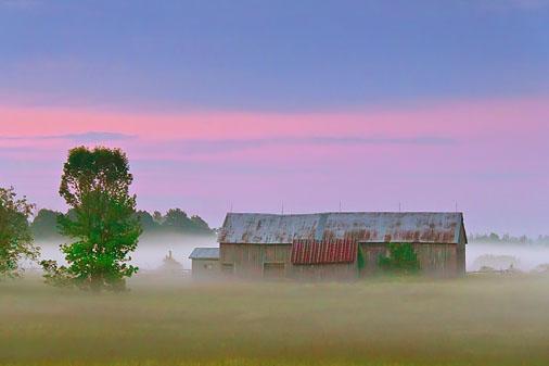 Barn In Misty Dawn 11128-30