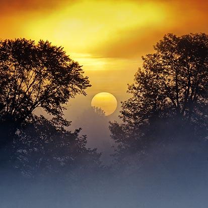 Foggy Sunrise 13476