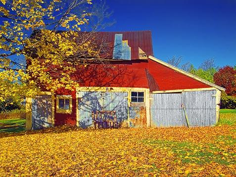 Autumn Barn DSCF02700