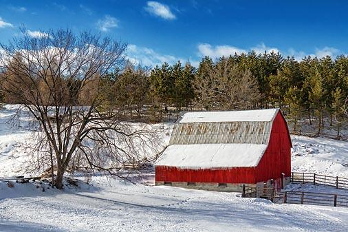 Red Barn In Winter 21427
