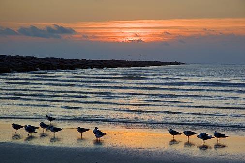South Jetty Sunrise 49148