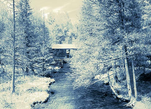 Pauls Creek 9222 Duotone