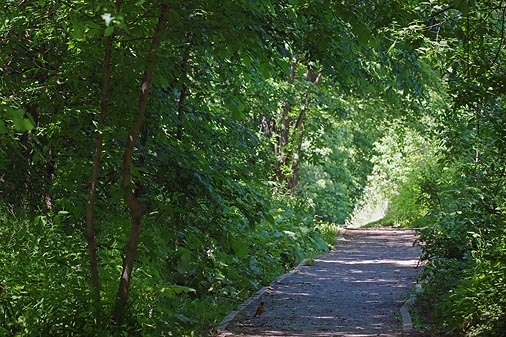 Arklan Trail 60913