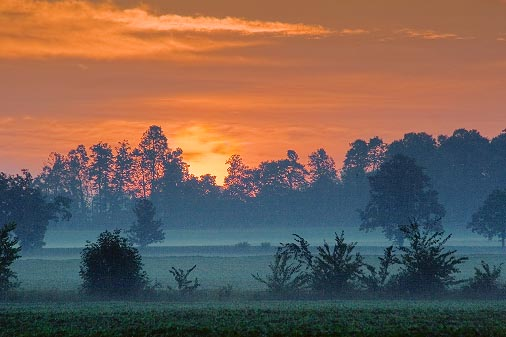 Sunrise 63750