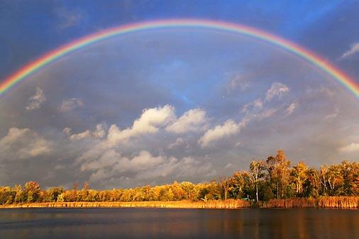 Rainbow-Center 67775