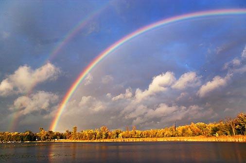 Rainbow-Left 67773