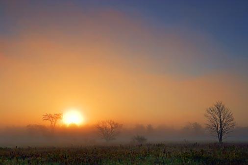 Foggy Sunrise 68093
