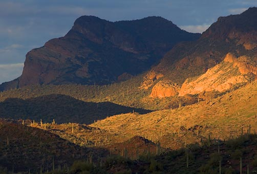 Goldfield Mountains 80937