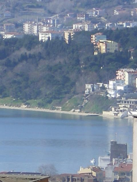20070211 191.jpg