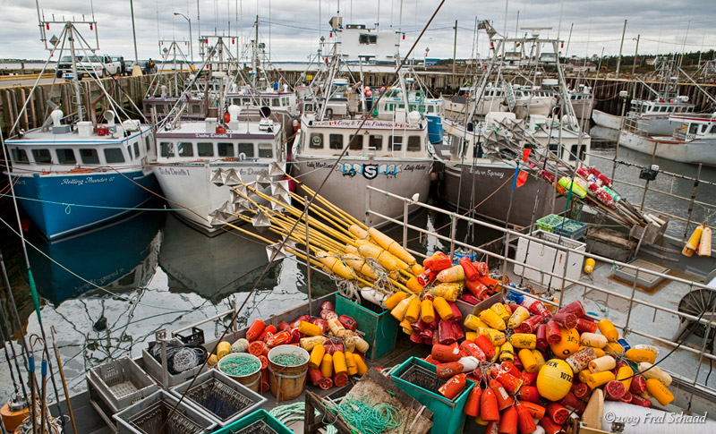 Gearing Up for Lobster Season