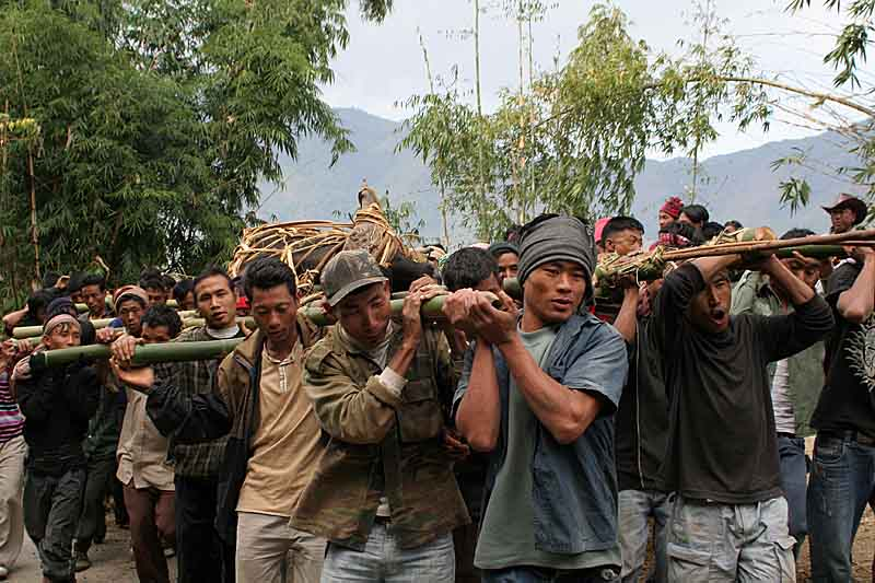 With rhythmic chants the villagers carry the mithun uphill to their village.