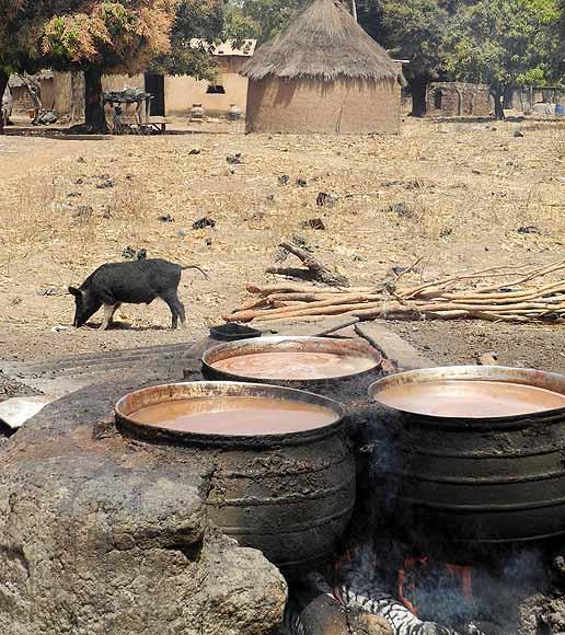 Preparation of millet beer, Burkina Faso