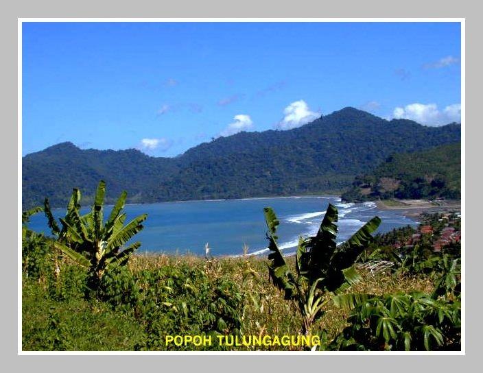 Pantai Popoh, Tulung Agung