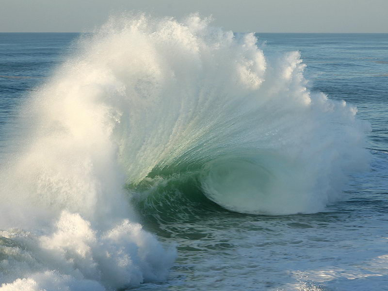 Perfect Backwash
