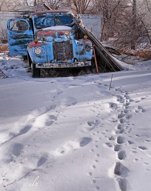 tracks to shelter