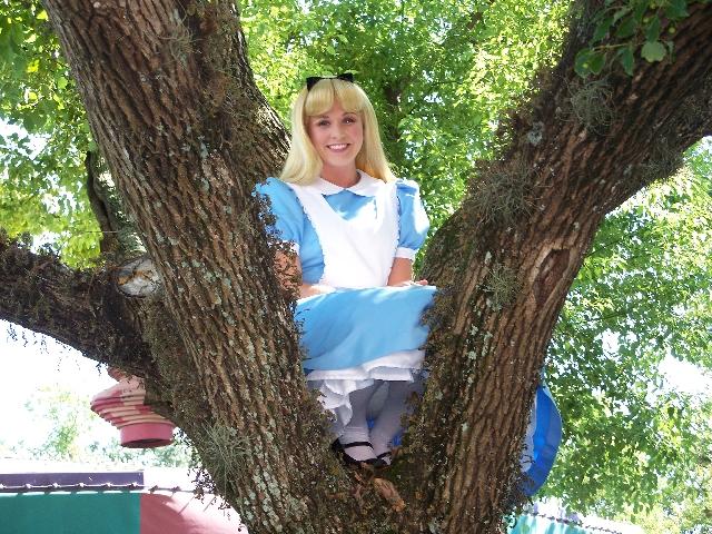 AliceTree3.jpg