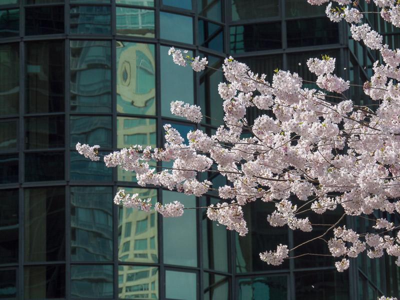 20130403_Vancouver_0297.jpg