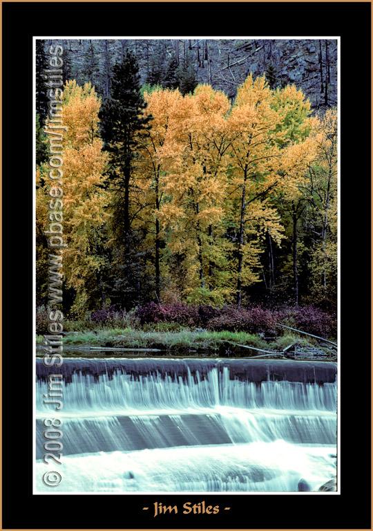 Autumn_0069-copy-b.jpg