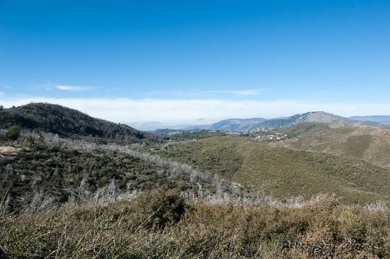 Pine Valley?
