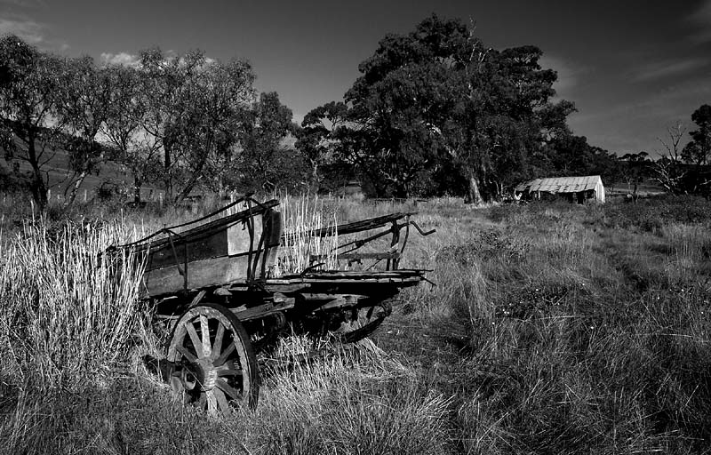 Old Cart and Shed.jpg