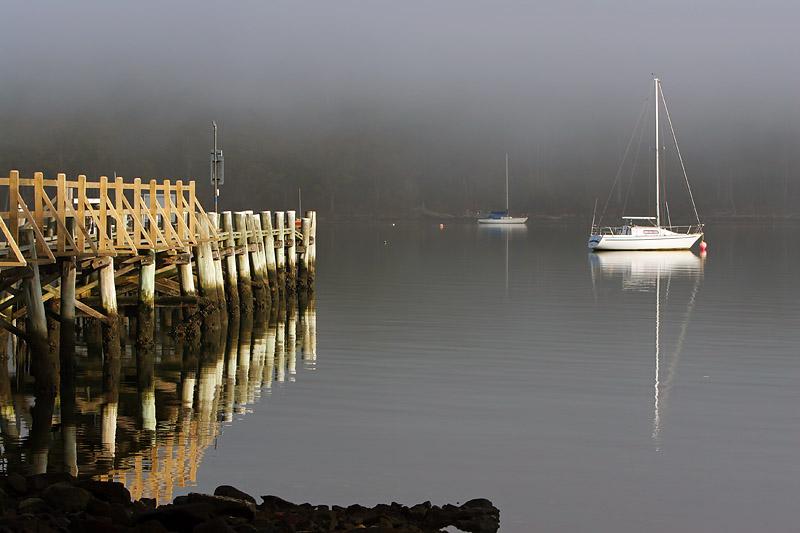 Misty Morning_1.jpg