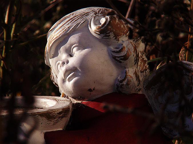 fallen angel<br>02-12-2006