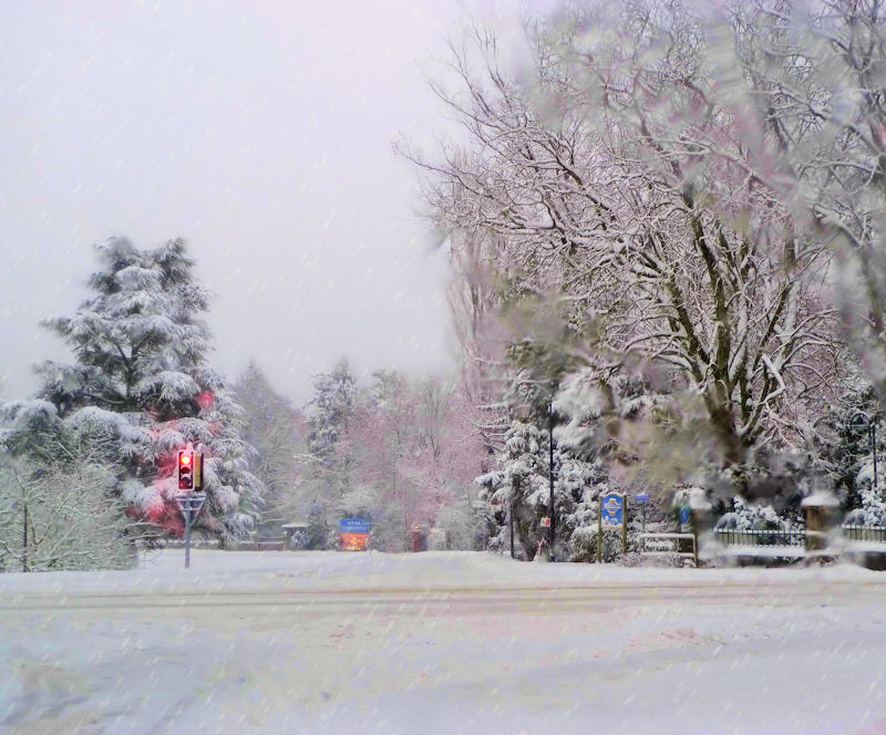 Under the snowfall...