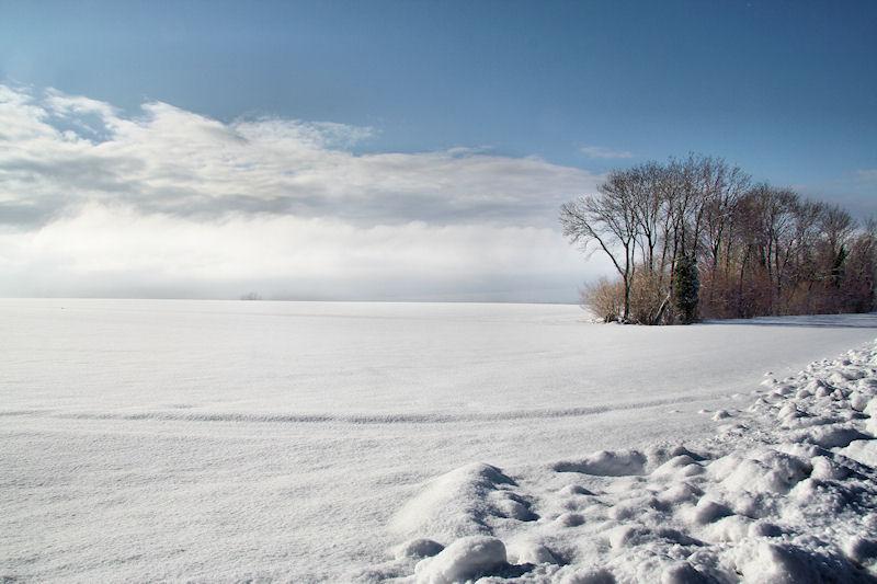 Zen feelings of winter...