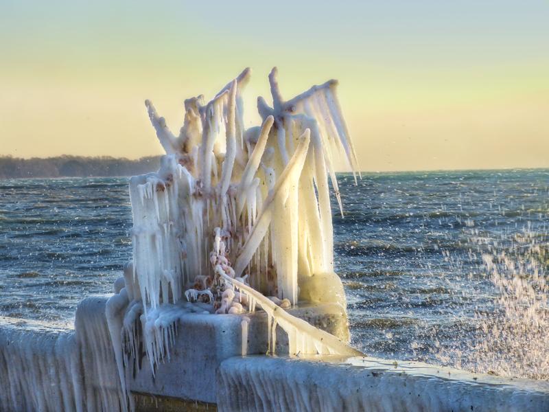 Ice sculpture....