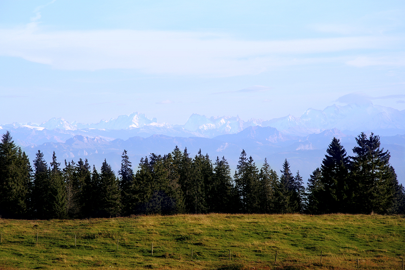 The Alps seen from Jura Mountains