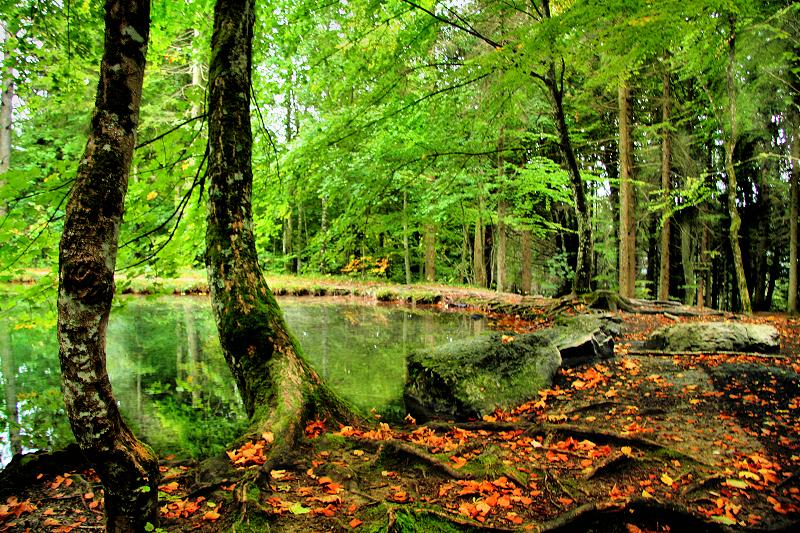 The Fairies Pond 33