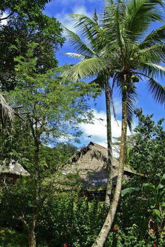 Rio Chagres - Embera Tribe - Village Scene