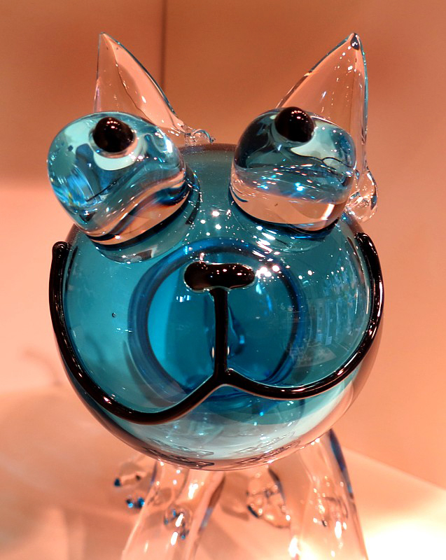 chat de verre