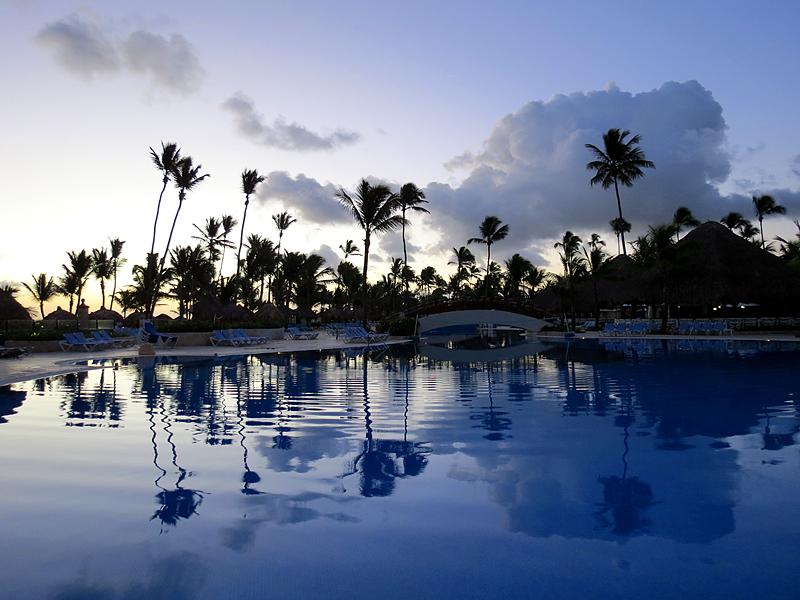 piscine et cocotiers au petit matin