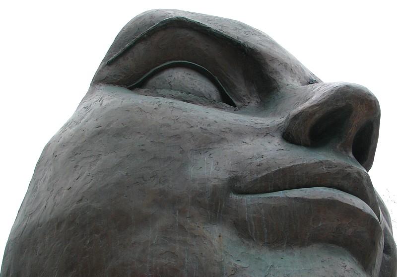 morceau de visage