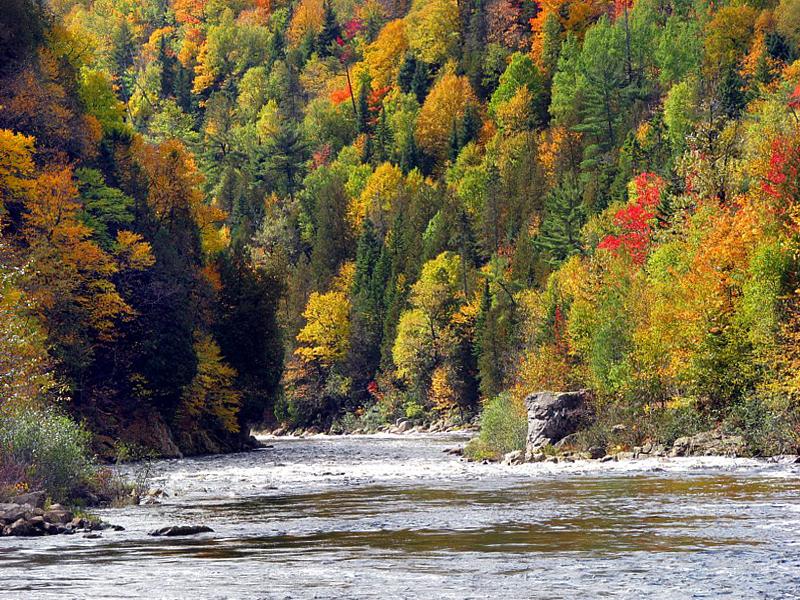 rivière dautomne