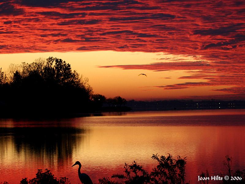 Niagara River Sunrise 04